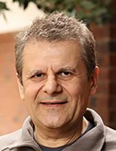 Mircea Stan